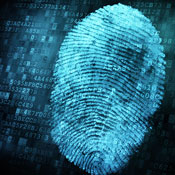 Developing a Digital Forensics Career