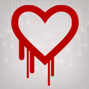 Heartbleed Bug: What You Need to Know