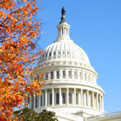 Will New Congress Alter HITECH Plans?